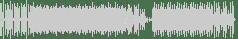 Roberto Vilas - Cortex (Original Mix) [Simplex Records] Waveform