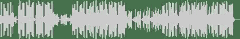 Reiner Liwenc - Distant Crashes (Original Mix) [eMBi Lab] Waveform