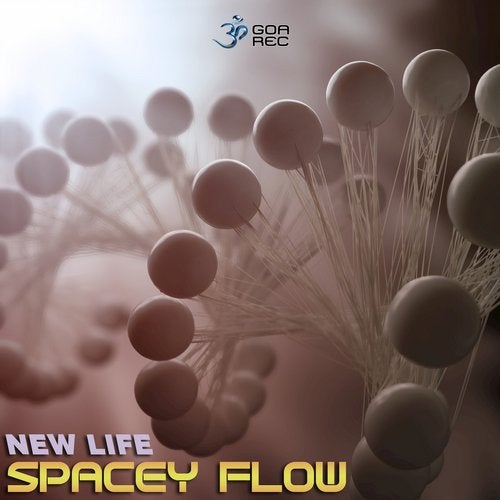 New Life               Original Mix