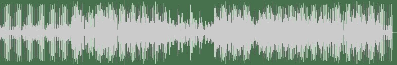 Nishan Lee - Voice of Ella (Felipe Michan Remix) [Stellar Fountain] Waveform