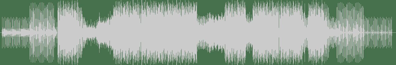 Supersonic - Halti (Anton Djaneiro Remix) [Black Turtle Records] Waveform