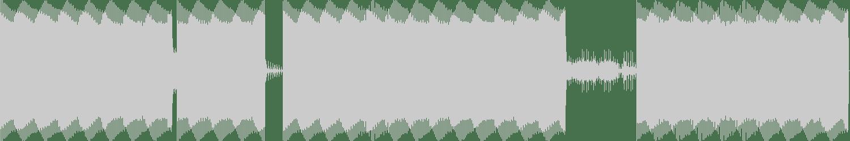 Black Lotus (GER) - Totality (Original Mix) [FLASH Recordings] Waveform