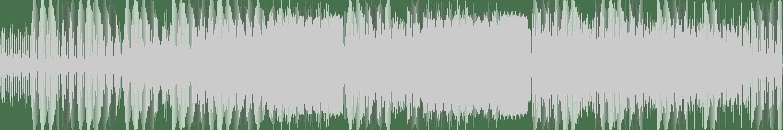 Raumakustik - Dem A Pree (Original Mix) [Emerald City Music] Waveform