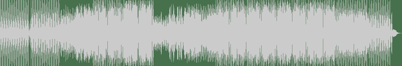 Sokol - Pulse (Original Mix) [Rich Records] Waveform