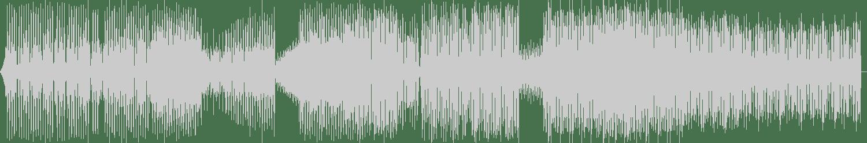 Steve Porter, Lee Burridge - Raw Dog (Tim Green (TG Remix)) [Phrunky Recordings] Waveform