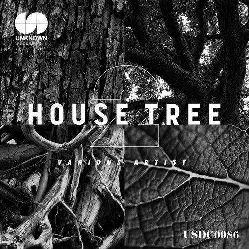 House Tree 2