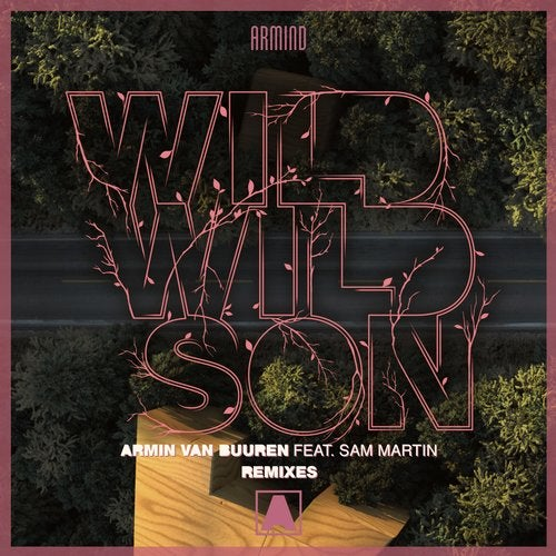 Wild Wild Son - Remixes