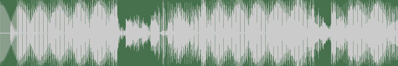Hector DJ - Electro Disco (original version) [Fleur du Mal Records] Waveform