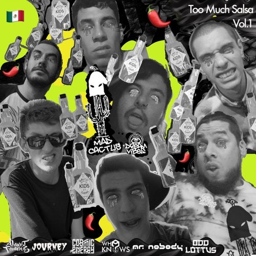 Too Much Salsa, Vol.1
