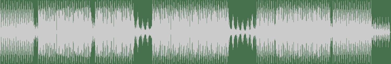 Maximo Gladius - The Immortal Life (Original Mix) [Magisterya] Waveform