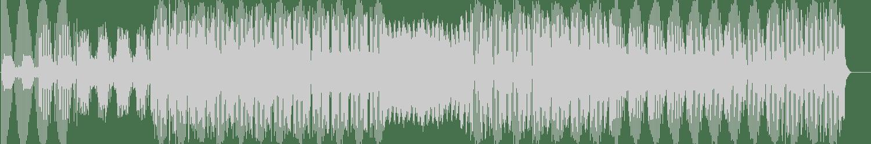 Elektromekanik - You're Mine (Stephane Deschezeaux Remix) [Springbok Records] Waveform