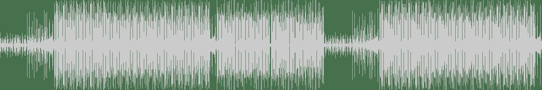 Mr. Boogie - Packer Unit (Original Mix) [Dubline] Waveform