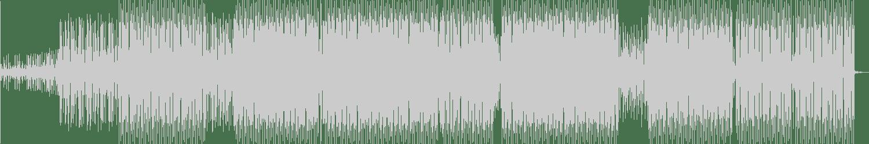 Ronan Portela, Ariel Rodz - Marshal Plant (Jorge Savoretti Remix) [Hermine Records] Waveform