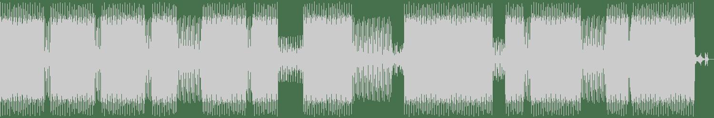 Steven Campodonico - Rabbit Hole (Original Mix) [Der Traegerlose Hut] Waveform
