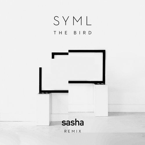 The Bird Sasha Remix