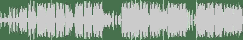 Kai. Z - No Right (Kaizer The Dj Remix) [Physical Techno Recordings] Waveform