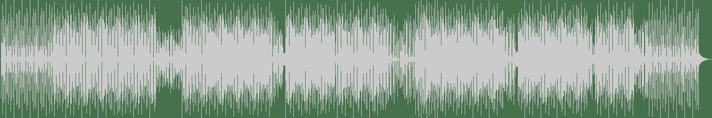 Mr KS - Groove On (Original) [Music Is Love] Waveform