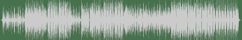 Steven Live - Ragga 97 (Original Mix) [Flex Up] Waveform