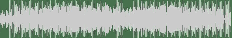Discotizer - Sizzlin' Hot (Original Mix) [Disco Future Records] Waveform