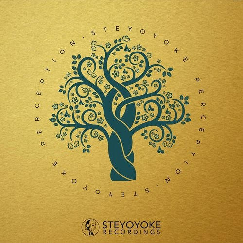 Steyoyoke Perception, Vol. 2