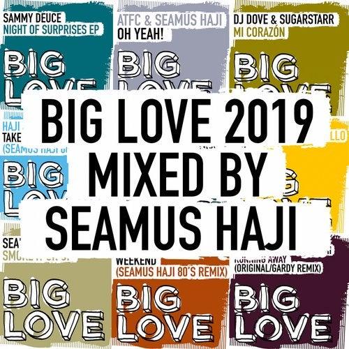 Big Love 2019 Mixed By Seamus Haji