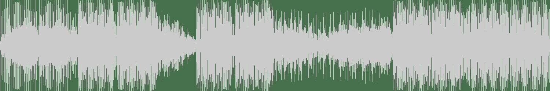 DJ PP - Just Nina (Simone Vitullo Remix) [PPMUSIC] Waveform