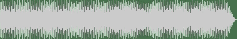 Planetary Assault Systems - Lazer Organical (Original Mix) [Mote Evolver] Waveform