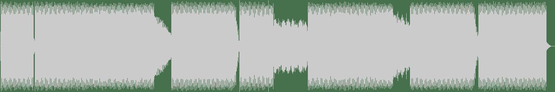 Ricardo Garduno - Not (Original Mix) [Abstract Mechanisms] Waveform
