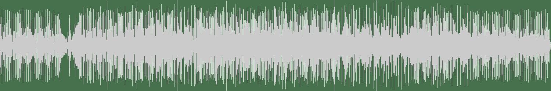 DJ Octopuz - Secret Of The Soul (Original Mix) [Ancestral Recordings] Waveform