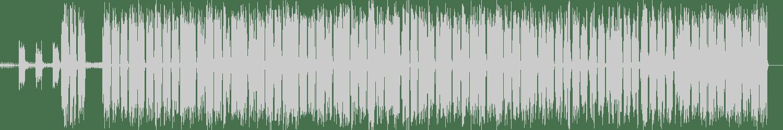 Dave Clarke, Anika - I'm Not Afraid (feat. Anika) (Original Mix) [Skint Records] Waveform