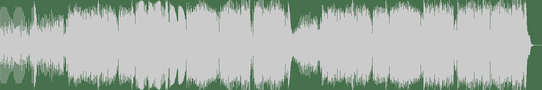 Arius - No Vip (Original Mix) [Calamity of Noise Records] Waveform