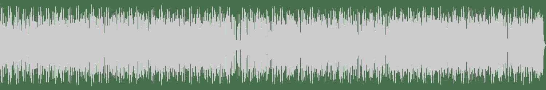 Pinchers - The Enemies (Original Mix) [VP Music Group, Inc] Waveform