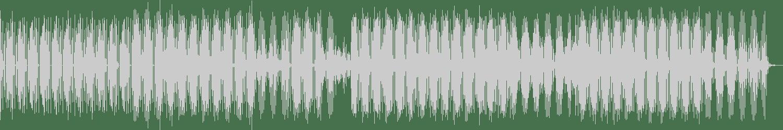Lauren Flax - Your Mom Likes Flange (Original Mix) [Dance Trax] Waveform