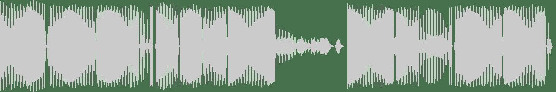 Benjamin Vial, ACF - La Forme Et Le Fond (Paul Blandford Darkforme Remix) [Death Proof Recordings] Waveform