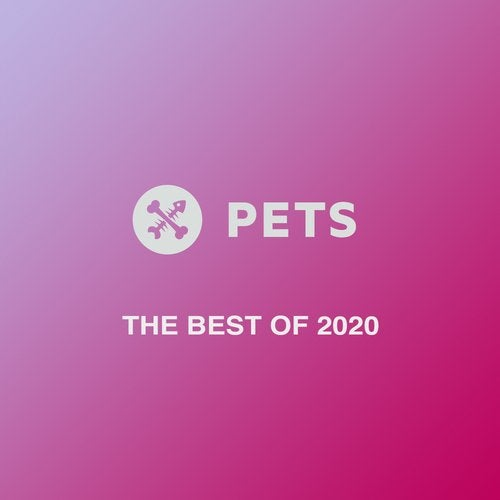 The Best Of Pets 2020