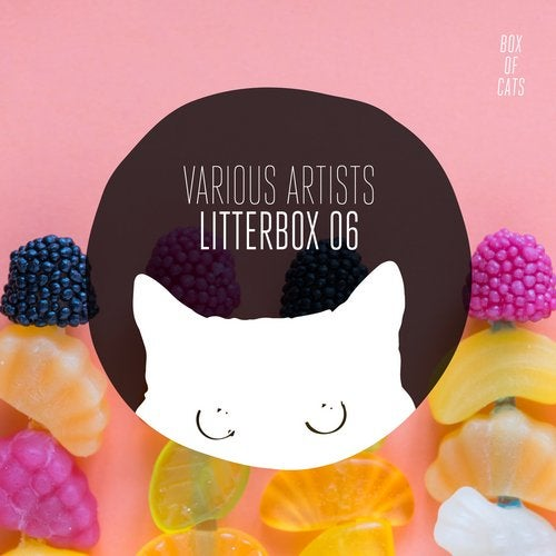 Litterbox 06