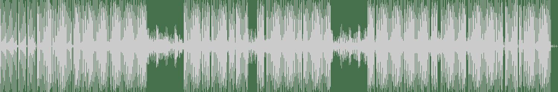 CRVCKHOUSE - Le disque (Original Mix) [Hermine Records] Waveform