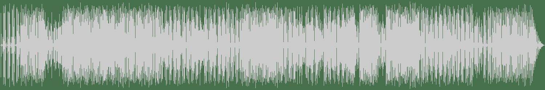 Roxanne Shante - Roxanne's Revenge (Re-Recorded / Remastered) [Goldenlane Records] Waveform