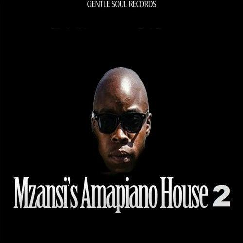 Mzansi's Amapiano House 2