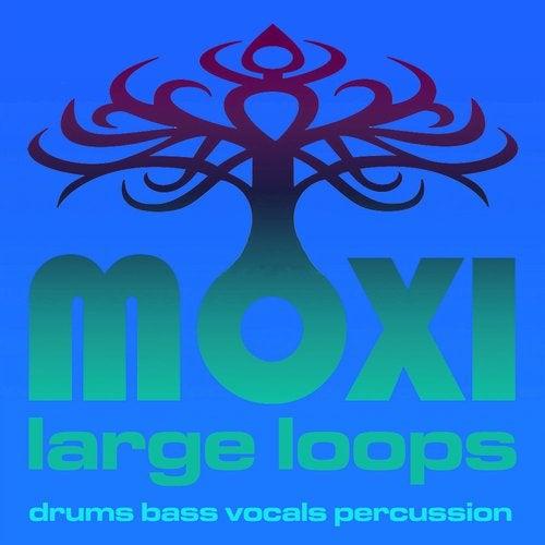 Loopy Beats 027