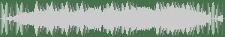 Quell - Alsos (Original Mix) [Ibadan Records] Waveform