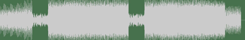 DuoScience - Life Goes (Original Mix) [Deeper Vision Recordings] Waveform