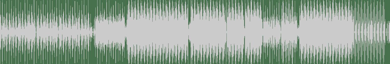 Holt 88 - Spider (Original Mix) [House Of Hustle] Waveform