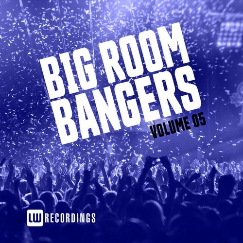 Big Room Bangers, Vol. 05