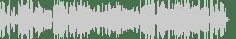 Ronny Leon, FABV - Aguardiente (Original Mix) [Play This! Records] Waveform