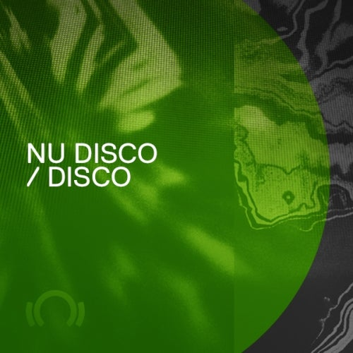 Beatport Best Sellers 2019 Disco Nu Disco FLAC