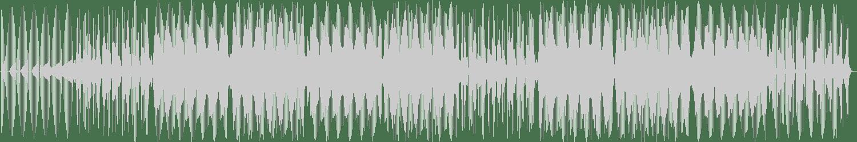 Trainmann - Lurline Baths (Tribu Tribe Mix) [Twister Music Milano] Waveform