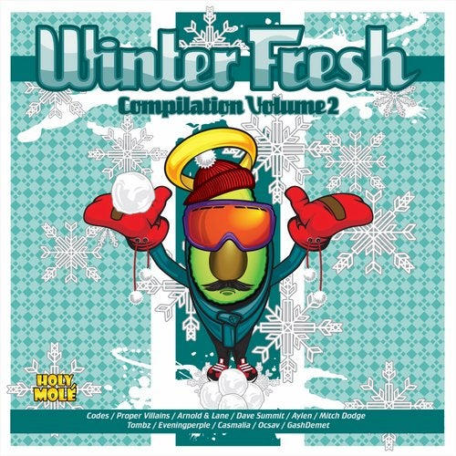 Winter Fresh Compilation Volume 2