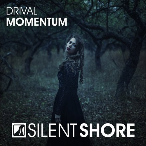 Momentum from Silent Shore Records on Beatport