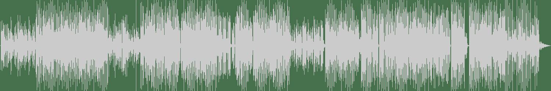 Sammy Senior - Just Once (Original Mix) [Scour Records] Waveform